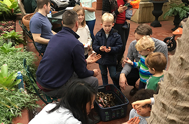 Indoor composting demo