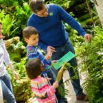 E_GRO15_Member-family-with-fern-activity