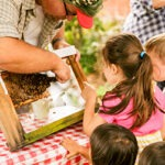E_HARVEST 15_Marcin-kids-bee-demo