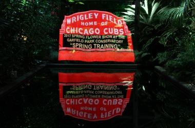 Spring Flower Show: Spring Training @ Spring Flower Show: Spring Training | Chicago | Illinois | United States