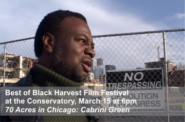 Best of Black Harvest - 70 Acres in Chicago Film