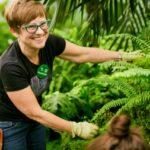 volunteer in fern room