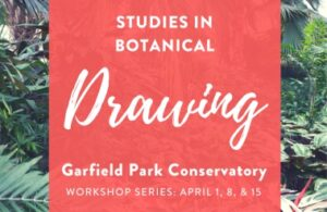 Studies in Botanical Drawing Class
