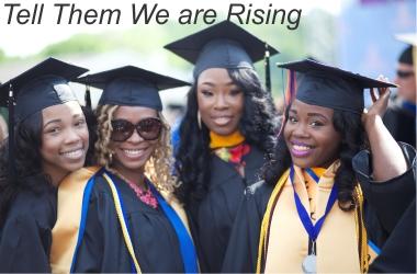 Best of Black Harvest Film Fest Tell Them We Are Rising Film
