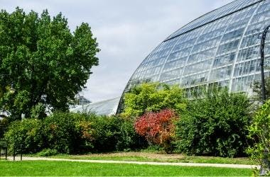 Photo of the outside of the Conservatory and trees on a sunny day