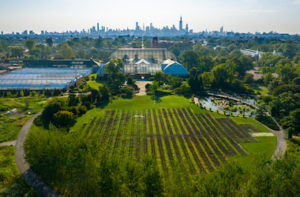 View of Garfield Park Conservatory and Cabbage Patch from the sky