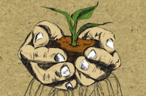 Drawing of two hands cupping a seedling and soil