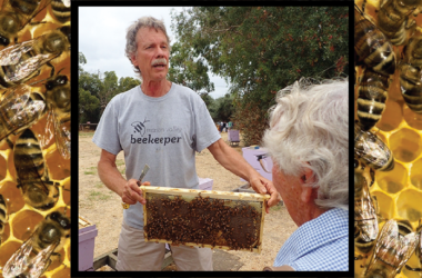Randy Oliver holding up a frame of bees.