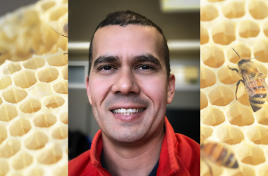 Photo of Dr. Humberto Boncristiani with bees in the background