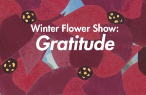 Winter Flower Show: Gratitude white text over red collage poinsettias in the background