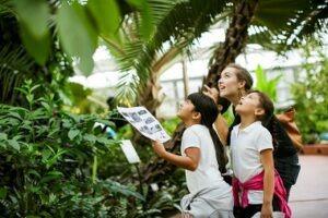 Virtual Field Trip for Homeschool Families: Intro to Plants