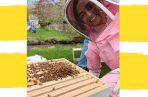 Virtual Beekeeping Lecture - Science Projects