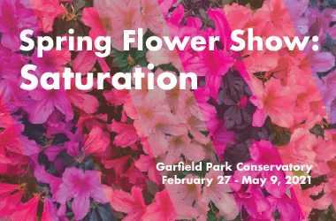 Multi color floral background with text Spring Flower Show Saturation Garfield Park Conservatory February 27 to May 9 2021