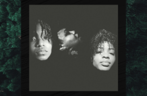 Black and White photo of three individuals - musicians. Only the faces are visible. The photo is set over a close up image of an evergreen tree. The overall colors are dark and moody.